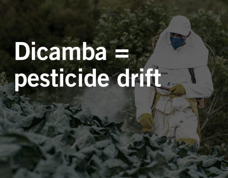 pesticide drift